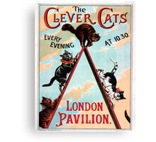 Clever Cats Canvas Print