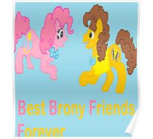 Best Brony Friends Forever  Poster