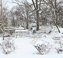 Snowy in Greenwich, CT by andrinamurrell