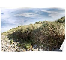 dramatic rocky beal beach Poster