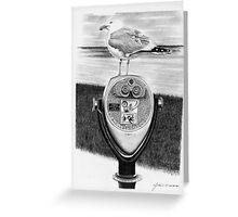 Chatham Seagull Greeting Card