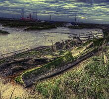 Wrecked by Nigel Bangert