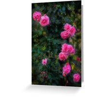 Climbing roses in a historic setting Greeting Card