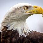Liberty in Profile  by Mikell Herrick
