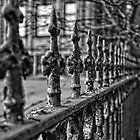 Aged and Beautiful Wrought Iron Fence by Kate Purdy