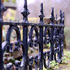 Wrought Iron Fence Surrounds Church by Kate Purdy