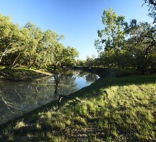 On The Banks Of The Barwon. by Terry Everson