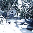 snowy silence by LoreLeft27
