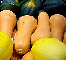 Squashes by Robert Meyers-Lussier