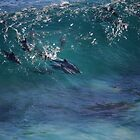 dolphins taking a wave by loza1976