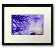 Orchid Perception Framed Print