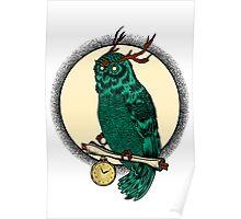 Eccentric Owl Poster