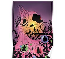 Silhouette Aurora Poster