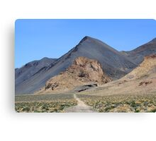 Along the desert road, Nixon Nevada USA Canvas Print