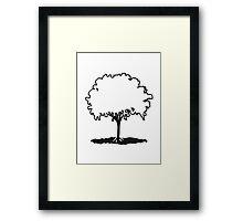 elm tree Framed Print