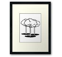 tall slender tree group Framed Print