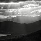 Tahoe Light by Jeffrey  Sinnock