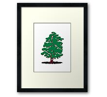 alder tree Framed Print