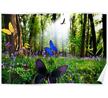paradise in nature Poster