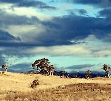 Monaro Plain by Laurakeet