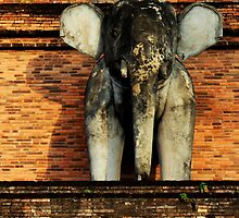 Anchient Elephant  by ALAN MCCRAY