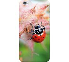 Ladybug & Wildflowers Phone Case iPhone Case/Skin