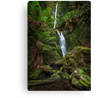 Quaille Falls Canvas Print