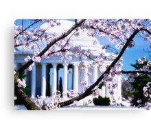 Jefferson Memorial Cherry Blossoms  Canvas Print