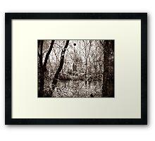River for the Trees Framed Print