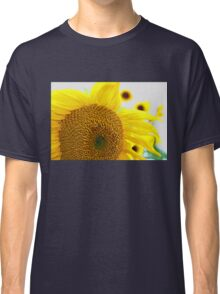 Sunflowers in the Sun Classic T-Shirt
