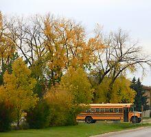 School Bus and Autumn Tones by TessZeiner