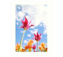 Purple Tulips 01 Art Print