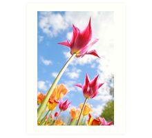 Purple Tulips 02 Art Print
