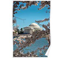 Cherry Blossom at Thomas Jefferson Memorial 2 Poster