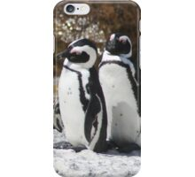 3 South African Penguins iPhone Case/Skin