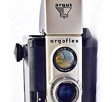 Argoflex by Nicole  McKinney
