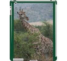 Giraffe in South Africa iPad Case/Skin