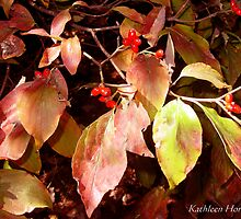 Dogwood Leaves in Fall by Kathleen Horner