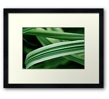 Spearmint Highway Framed Print