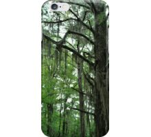 Louisiana Trees 1 iPhone Case/Skin