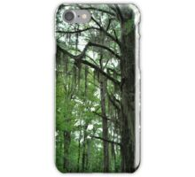 Louisiana Trees 1 iPhone Case/Skin