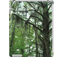 Louisiana Trees 1 iPad Case/Skin