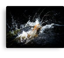 Golden Retriver Leaps into Water Canvas Print