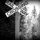 Rail Way by Moonpebble