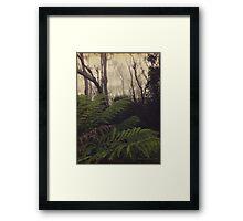Rainforest No.11 Framed Print