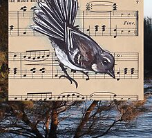 Woodland Whispers - Grey Fantail by TwoShoes