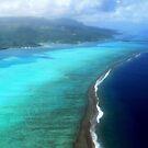Coral Reef - Tahitian Island by Honor Kyne