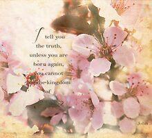 I tell you the truth-John 3:3 by vigor