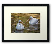 White Birds Framed Print