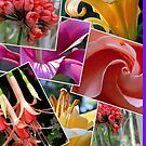 A Gorgeous Floral Collage for Your Iphone or Ipod! by Pat Yager